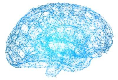 Misophonia brain